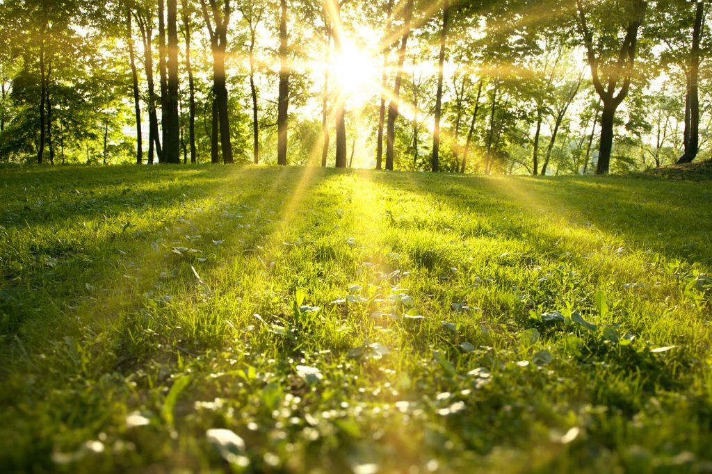 והיה עקב תשמעון – המפתח לשמחה פנימית